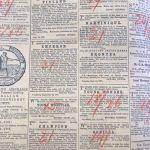 Warrnambool Examiner 1870s 3